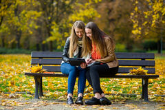 Early warm fall. Two charming girls sit on a bench in the autumn park. Royalty Free Stock Photography
