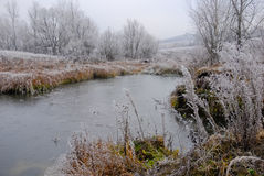 Early winter landscape with small pond, frosted plants and trees Stock Photo