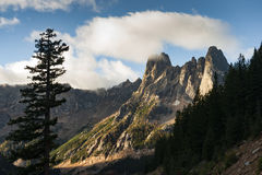 Early Winters Spires Stock Images