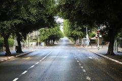 Empty Tel-Aviv Street Stock Images
