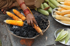 Earn of corn being roasted on the street Royalty Free Stock Photography