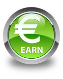 Earn (euro sign) glossy green round button Stock Images