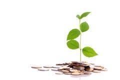 Earn money Royalty Free Stock Photo