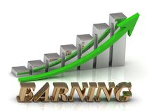 EARNING- inscription of gold letters and Graphic growth Stock Photography