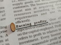 Free Earning Profits Business Related Terminology Displayed On Paper Page Royalty Free Stock Photos - 164056868