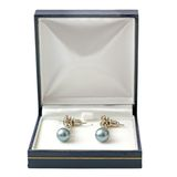 Earrings in box Royalty Free Stock Image