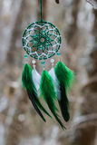 Earrings with feathers on the branch Stock Photo