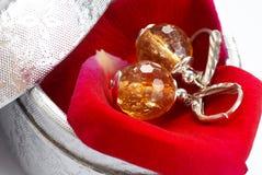 Earrings in gift box Stock Photo
