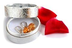Earrings in gift box Stock Image