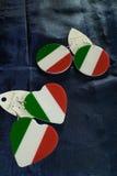 Earrings Italy Flag Stock Photos
