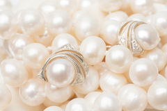Earrings made of silver with white pearl Stock Images