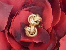 Earrings on petals. A pair of gold earrings on rose petals Royalty Free Stock Photography