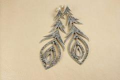 Earrings with zirconium stones Royalty Free Stock Photo