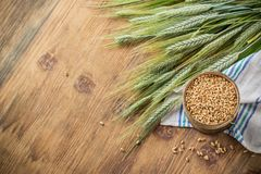 Ears of barley and wheat on the wooden background Royalty Free Stock Photos