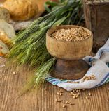 Ears of barley and wheat on the wooden background Royalty Free Stock Images