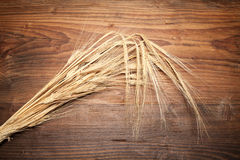 Ears of barley on wooden table Stock Image