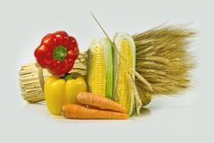 Ears and corn. Composition from corn, red pepper, carrots and ears of wheat Royalty Free Stock Images