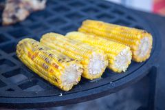Ears of corn baked on the grill. Selective focus. royalty free stock photography