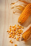 Ears of corn composition Royalty Free Stock Photo