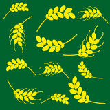 Ears of corn on a green background. Ears of wheat and barley on green background. Vector illustration Royalty Free Stock Image