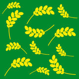 Ears of corn on a green background. Ears of wheat on green background. Vector illustration Royalty Free Stock Photo