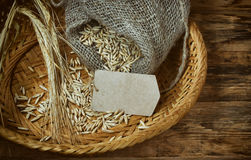 Ears of corn and seed oats in wicker plate Royalty Free Stock Photos