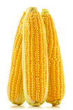 Ears of corn on a white background Royalty Free Stock Photos