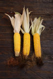 Ears of corn on the wooden background Stock Image