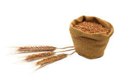 Ears and grain in a bag isolated on a white Stock Images