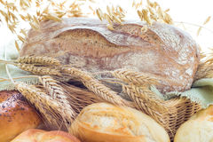 Ears grain bakery products Stock Images