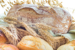 Ears grain bakery products Royalty Free Stock Image