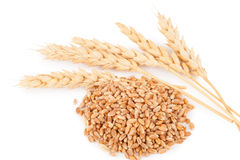 Free Ears Of Wheat Royalty Free Stock Images - 87048879