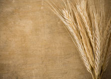 Ears spike of wheat on wood. Texture background Royalty Free Stock Photos