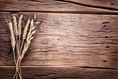 Ears of wheat. Stock Photography