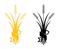 Ears of Wheat, Barley or Rye vector visual graphic icons. Ideal for bread packaging, beer labels etc Stock Photos