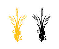 Ears of Wheat, Barley or Rye vector visual graphic icons. Ideal for bread packaging, beer labels etc Stock Image