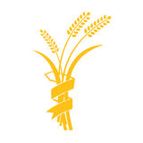 Ears of Wheat, Barley or Rye vector visual graphic icons. Ideal for bread packaging, beer labels etc Stock Photo