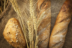 Ears of wheat and bread Royalty Free Stock Images