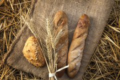Ears of wheat and bread Royalty Free Stock Photos