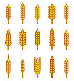 Ears of wheat bread symbols. Organic and bread, agriculture seed, plant and food, natural eat. Vector illustration royalty free illustration
