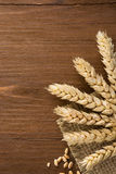 Ears of wheat on burlap Stock Photography