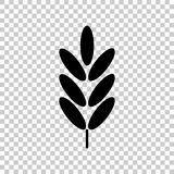 Ears of wheat, cereal. Ear of oats. rye ears. Vector icon illustration Royalty Free Stock Images