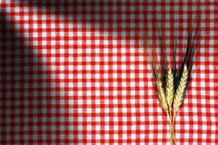 Ears of Wheat on a Checkered Tablecloth Royalty Free Stock Images