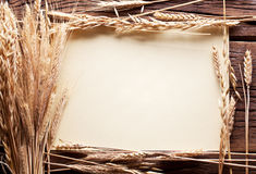 Ears of wheat in the form frame. Royalty Free Stock Photography