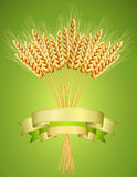 Ears of wheat on green background Stock Photo