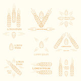 Ears of wheat logo Royalty Free Stock Photos