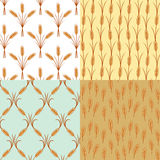 Ears of wheat pattern Stock Photos