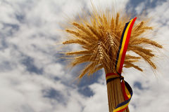 Ears of wheat and the romanian tricolor ribbon Stock Photos