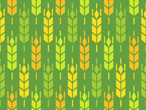 Ears of Wheat, Rye and Barley. Vector Pattern, Looped Background Illustration Stock Images
