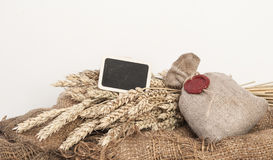 Ears of wheat and sack of wheat grains Stock Photography